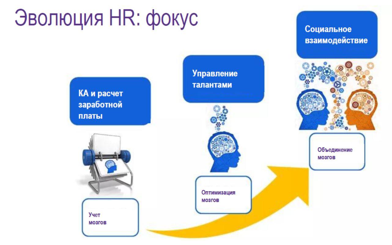 Фокус HR
