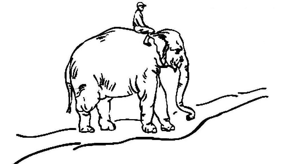 Слон и всадник